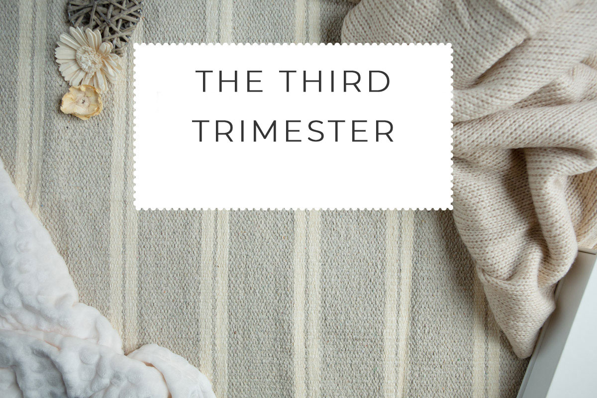 The Third Trimester